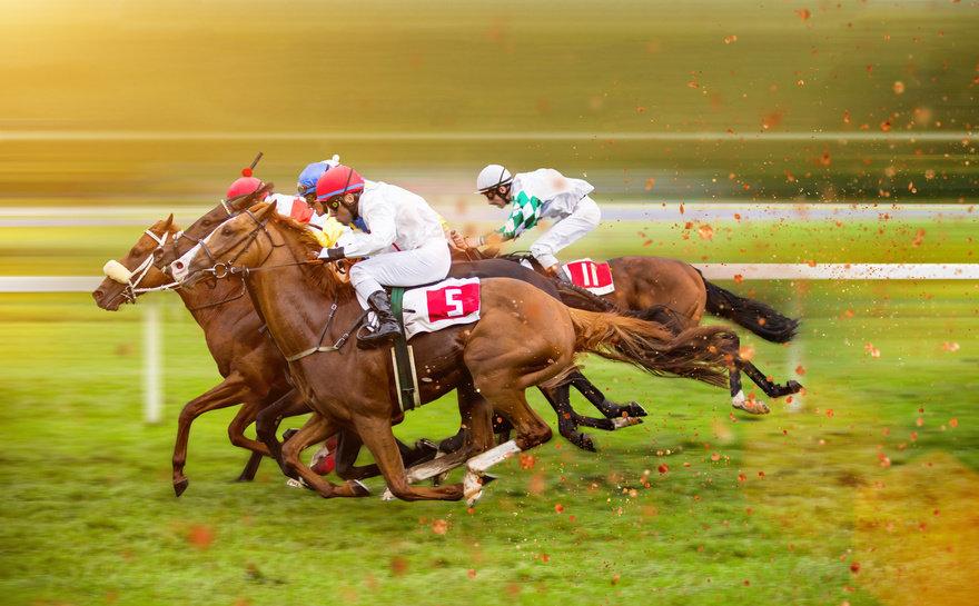 ม้าแข่งออนไลน์ เดิมพันง่ายๆไม่กี่ขั้นตอน